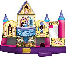 5 & 1 Combo - Disney Princess 3D